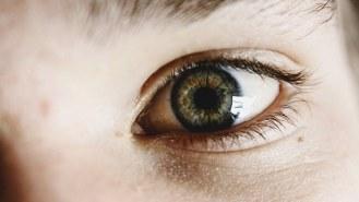 eyes-340